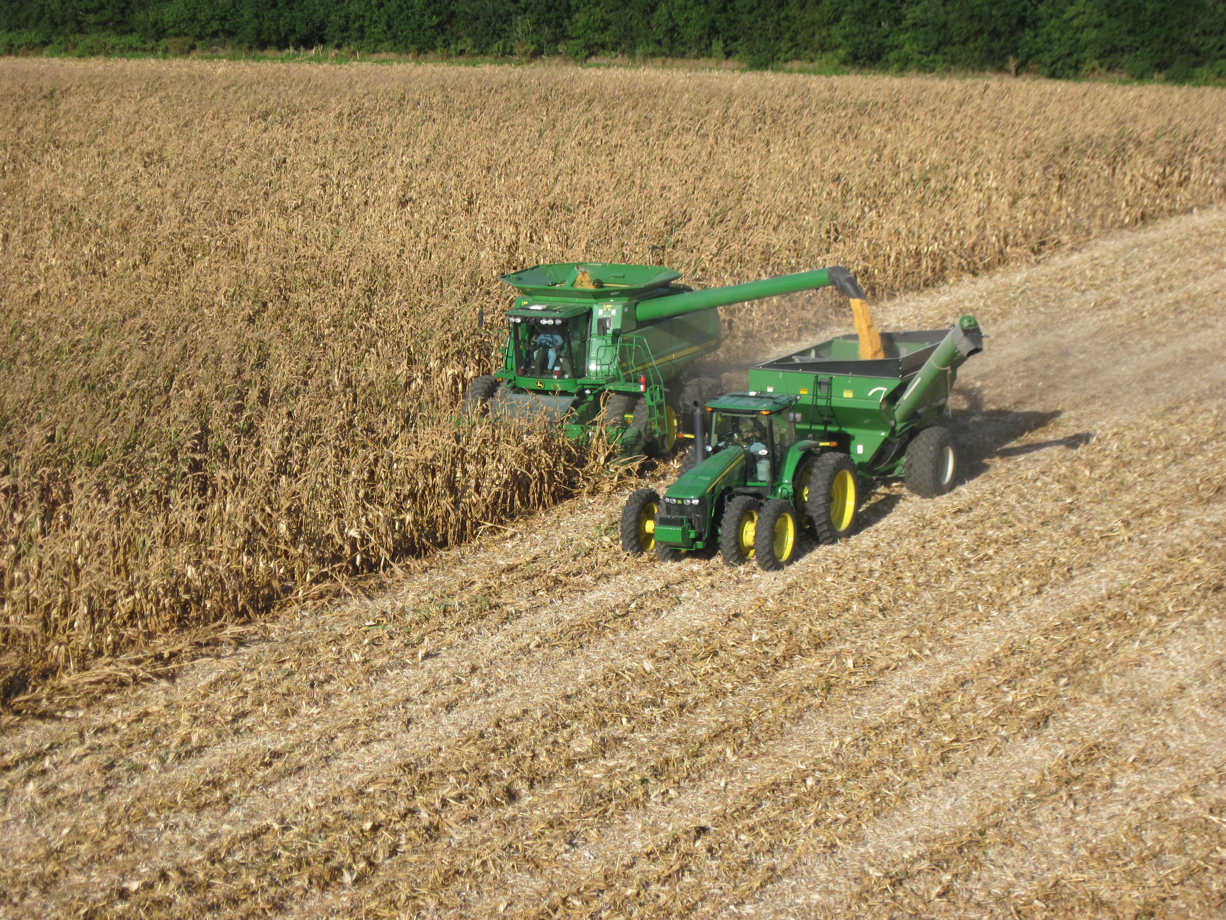 New Harvest Photos Noland Farms Inc Noland Farms Inc