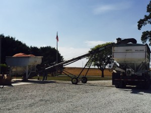 Loading dry fertilizer into the tender truck... Replacing nutrients used by the 2015 crop
