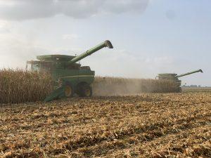 Dennis and Duane harvesting corn